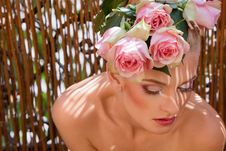 Portrait Of Blonde With A Wreath Of Flowers Royalty Free Stock Image