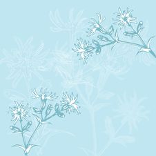 Free Blue Flowers Stock Photos - 16040453