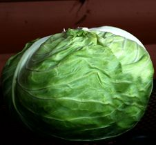 Free Fresh Cabbage Royalty Free Stock Images - 16040979