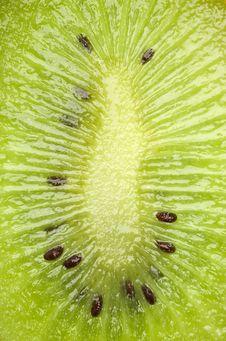 Free Fresh Green Kiwi Royalty Free Stock Images - 16041099