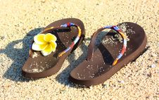 Free Flower And Flip Flops On The Beach Royalty Free Stock Photo - 16041475
