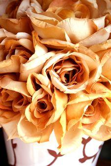 Free Dust Rose Stock Image - 16041681