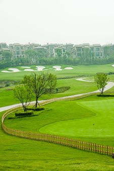 Free Golf Grass Tree Royalty Free Stock Photography - 16042217