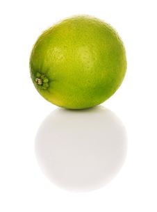 Free Lime Stock Image - 16048441
