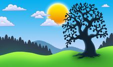 Free Leafy Tree Silhouette In Landscape Royalty Free Stock Images - 16048959