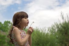 Free Beautiful Young Girl Blow Dandelion Outdoor Stock Photos - 16049663