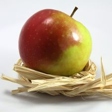 Free Red And Green Apple Royalty Free Stock Photography - 16049687