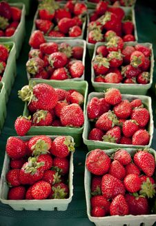 Free Strawberries In Green Boxes, Vertical Royalty Free Stock Photography - 16049917