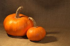 Free Two Pumpkins Stock Image - 16050811