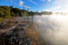Free Thermal Lake In The Kuirau Park In Rotorua Stock Photography - 16053442