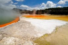 Free Champagne Pool And Artist S Palette Stock Photography - 16053652