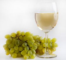 Free Wine And Grapes Royalty Free Stock Image - 16054696