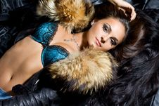 Fashionable Woman With Fur Royalty Free Stock Images