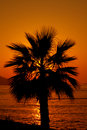 Free Sun Setting Stock Images - 16069864