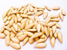 Free Pumpkin Seeds Stock Photos - 16061803