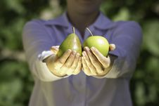 Fresh Fruits In Woman S Hands. Stock Images