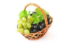 Free Grapes In The Basket Stock Photography - 16062872