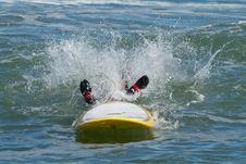 Free Waverider Royalty Free Stock Photos - 16063968