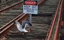 Free Danger On Rail Tracks, Keep Out Royalty Free Stock Images - 16064369