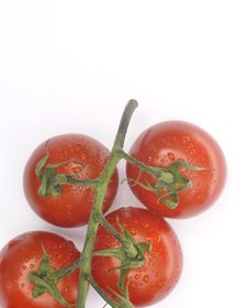 Free Ripe Vine Tomatoes Royalty Free Stock Images - 16064749