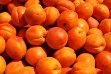 Free Apricots Texture Stock Photos - 16068193