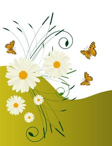 A Background With Daisies And Butterflies Royalty Free Stock Photo