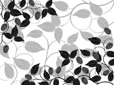 Free Floral Background Royalty Free Stock Photo - 16069255