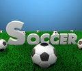 Free Soccer Scene Stock Photography - 16072092