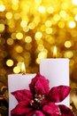 Free Christmas Decoration Royalty Free Stock Image - 16075476