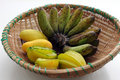 Free Organic Fruit Stock Photos - 16077093