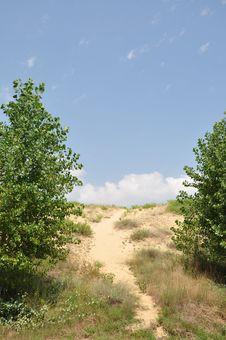 Free Sand Dunes. Stock Image - 16071991