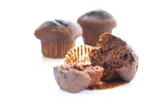 Free Tasty Chocolate Muffin Stock Image - 16072091