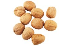Free Walnuts Isolated On White Stock Images - 16072484