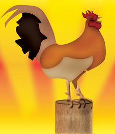 Free Rooster Stock Images - 16072634