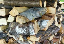Free Logs Royalty Free Stock Photo - 16076035