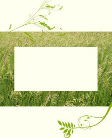 Free Country Field Frame Stock Photo - 16076820