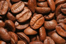 Free Background Made From Coffee Beans Stock Photography - 16077392