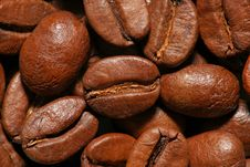 Free Coffee Beans. Close Up View Stock Photos - 16077493