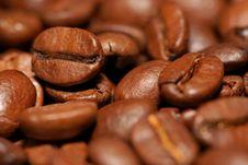 Free Coffee Beans Stock Photo - 16077500