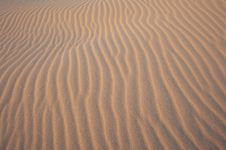 Free Abstract Dune Pattern Royalty Free Stock Images - 16078149