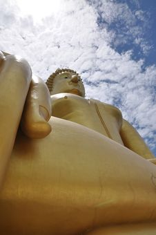 Free Bigest Buddha Image Royalty Free Stock Photography - 16078277