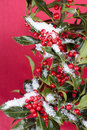 Free Christmas Decorations Royalty Free Stock Photos - 16081478