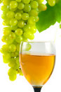 Free Glass Of Wine And Grapes Royalty Free Stock Photos - 16088488