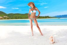 Free Woman On The Beach Royalty Free Stock Photos - 16080528