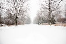 Free Snow Covered Country Road Royalty Free Stock Photography - 16080767
