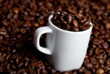 Free Espresso Stock Photography - 16081702
