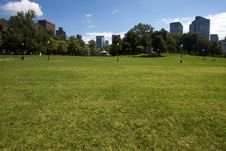 Free Boston Public Garden Stock Images - 16081844