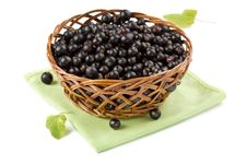Free Basket Of Black Currant Royalty Free Stock Image - 16082986