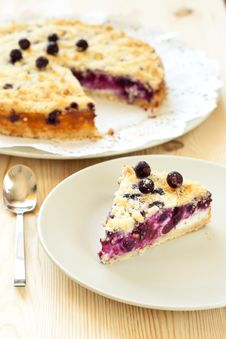 Free Slice Of Black Currant Pie Stock Photography - 16084722