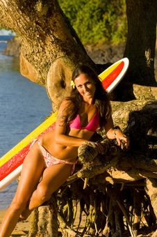 Hawaii Surfer Girl Stock Image